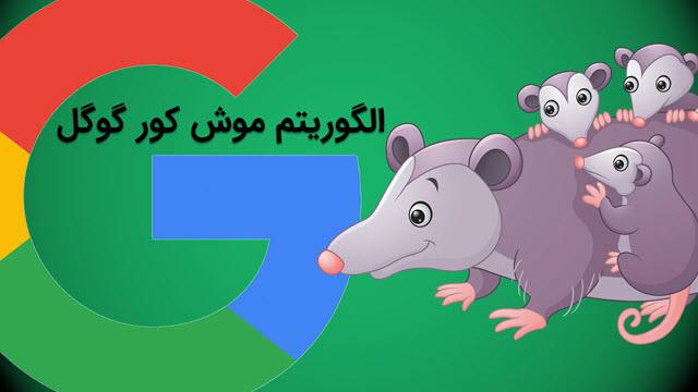 الگوریتم موش کور گوگل
